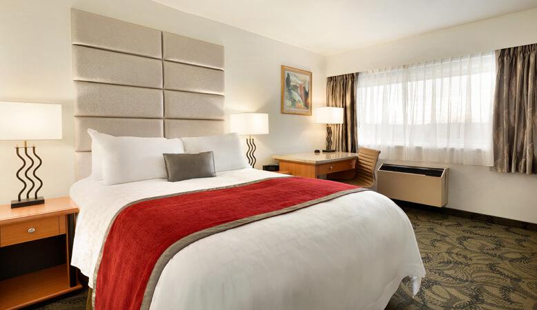 东翼标准单床客房